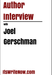 Author interview with Joel Gerschman of 'The Mindful Entrepreneur'
