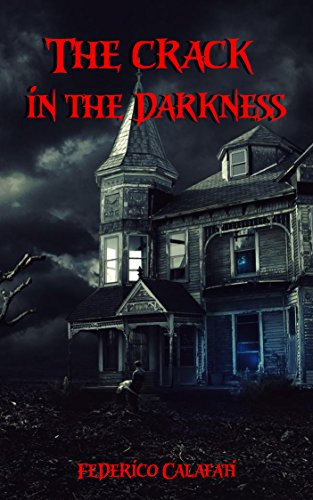 The crack in the darkness book cover