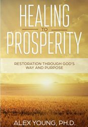 Healing to Prosperity: Restoration Through God's Way (Bargain Book)